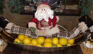 Christmas-blog--santa-in-the-lemons