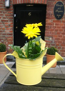 Liz-Jones-Blog---yellow-daisies