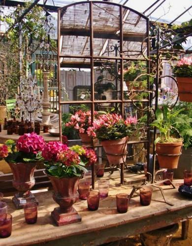blog---petersham-nursery--glasshouse1--2013