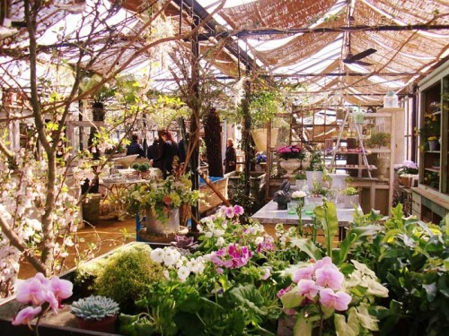 blog---petersham-nursery--glasshouse2--2013